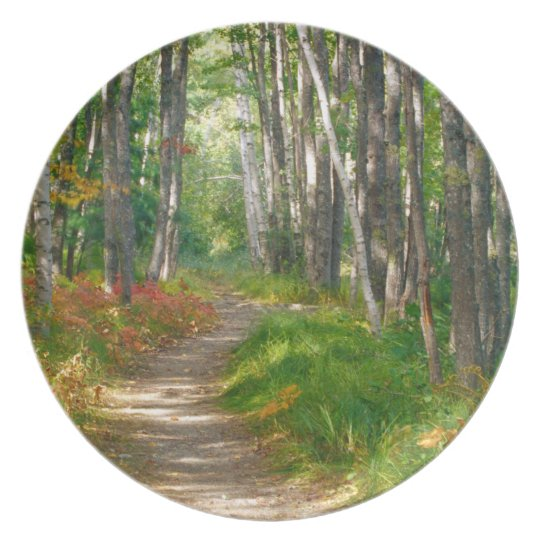 NA, USA, Maine.  Jessup trail in Acadia National Dinner Plate