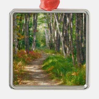 NA, USA, Maine.  Jessup trail in Acadia National Metal Ornament