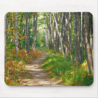 NA, USA, Maine.  Jessup trail in Acadia National Mouse Pad
