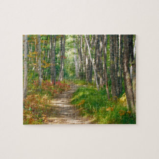 NA USA Maine Jessup trail in Acadia National Puzzles