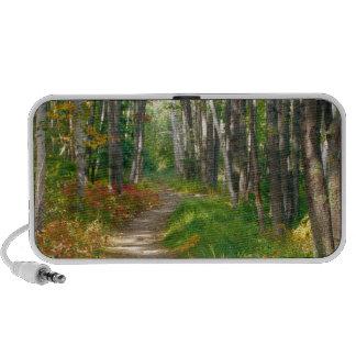 NA, USA, Maine.  Jessup trail in Acadia National iPhone Speaker