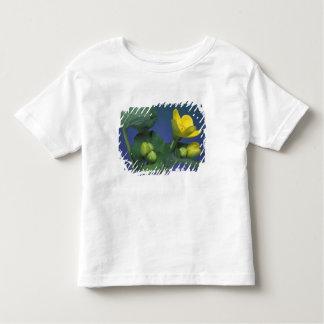 NA, USA, Michigan, Rochester Hills. Marsh Toddler T-shirt