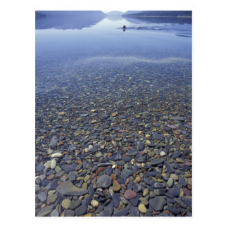 NA, USA, Montana, Glacier NP Rocks in Lake Postcard