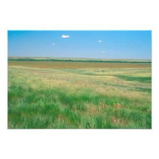 NA, USA, NE. Grasslands near Ogallala with Photograph