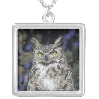 NA, USA, New Mexico, Wildlife West Nature Park Silver Plated Necklace