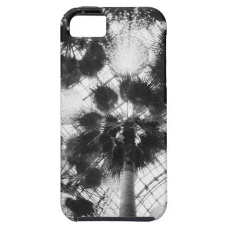 NA, USA, New York, New York City. Palm trees in iPhone SE/5/5s Case