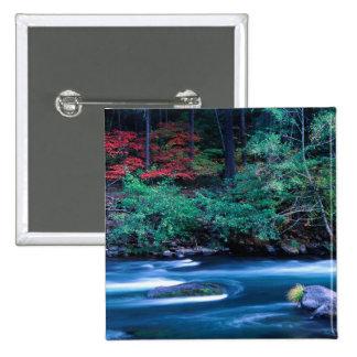 NA, USA, Oregon, Fall Foliage on North Umpquah 2 Inch Square Button