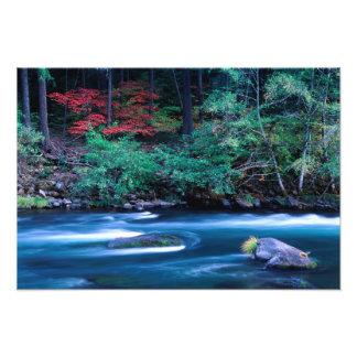 NA, USA, Oregon, Fall Foliage on North Umpquah Photo
