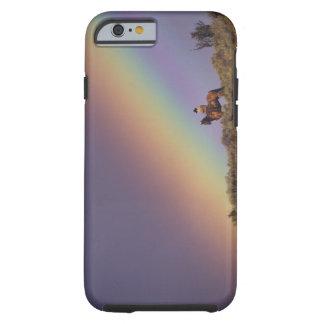 NA, USA, Oregon, Seneca, Ponderosa Ranch, Tough iPhone 6 Case