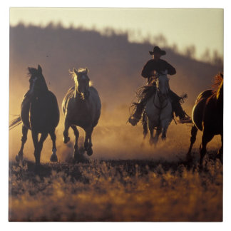 NA, USA, Oregon, Seneca, Ponderosa Ranch, Cowboy 2 Large Square Tile