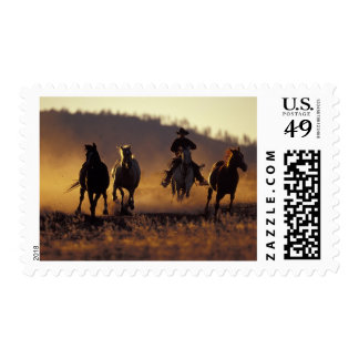 NA, USA, Oregon, Seneca, Ponderosa Ranch, Cowboy 2 Postage