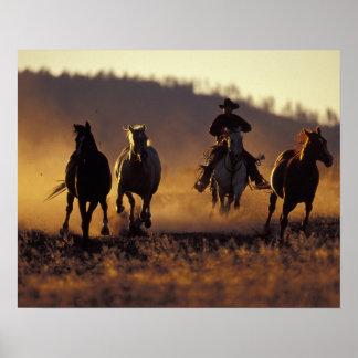 NA, USA, Oregon, Seneca, Ponderosa Ranch, Cowboy 2 Poster