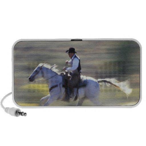 NA, USA, Oregon, Seneca, Ponderosa Ranch, Cowboy iPod Speaker
