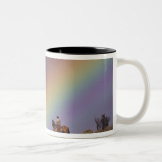 NA USA Oregon Seneca Ponderosa Ranch Coffee Mugs