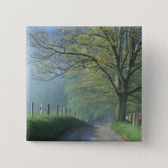 NA, USA, Tennessee, Cades Cove, Great Smoky Button