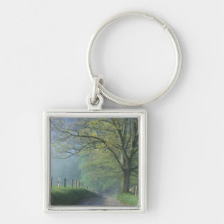 NA, USA, Tennessee, Cades Cove, Great Smoky Silver-Colored Square Keychain