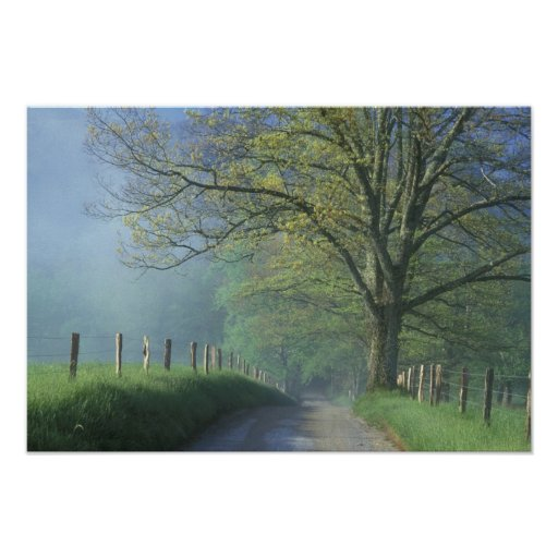 NA, USA, Tennessee, Cades Cove, Great Smoky Poster