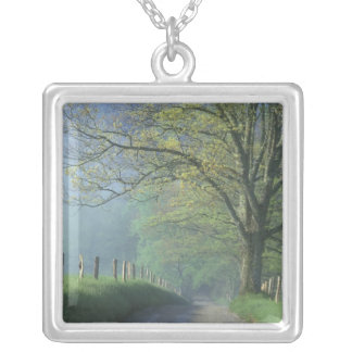 NA, USA, Tennessee, Cades Cove, Great Smoky Silver Plated Necklace