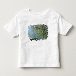 NA, USA, Tennessee, Cades Cove, Great Smoky Toddler T-shirt