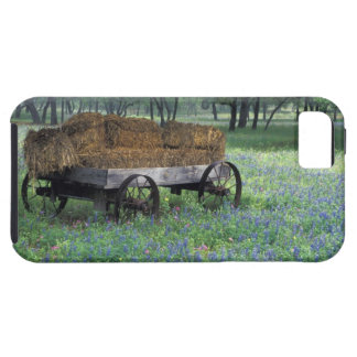NA, USA, Texas, east of Devine, Old wagon in iPhone SE/5/5s Case