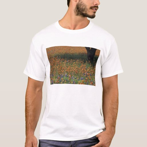 NA, USA, Texas, Hill Country, Paint brush and T-Shirt
