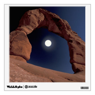 NA, USA, Utah, Arches National Park. Delicate Wall Graphics