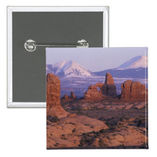 NA, USA, Utah, Arches National Park. Garden of Buttons