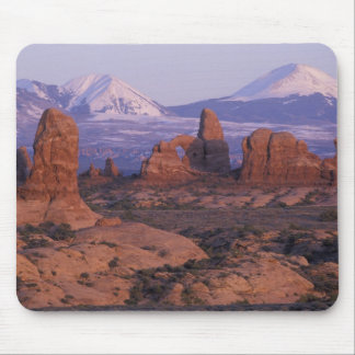 NA, USA, Utah, Arches National Park. Garden of Mouse Pad