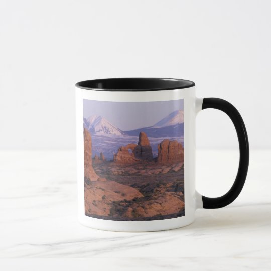 NA, USA, Utah, Arches National Park. Garden of Mug