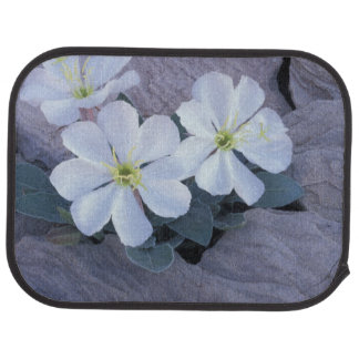NA, USA, Utah, Arches NP, Evening primrose Car Floor Mat