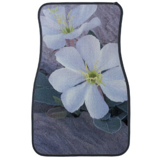 NA, USA, Utah, Arches NP, Evening primrose Car Mat