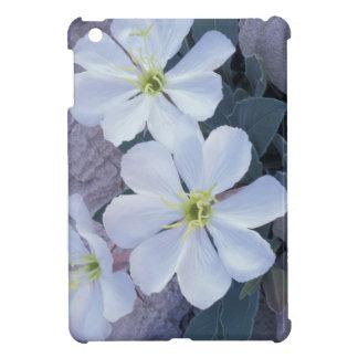 NA, USA, Utah, Arches NP, Evening primrose Cover For The iPad Mini