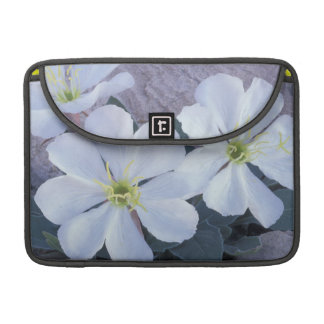 NA, USA, Utah, Arches NP, Evening primrose MacBook Pro Sleeve