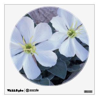 NA, USA, Utah, Arches NP, Evening primrose Room Stickers