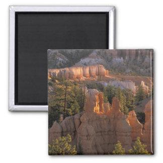 NA, USA, Utah, Bryce Canyon NP 2 2 Inch Square Magnet