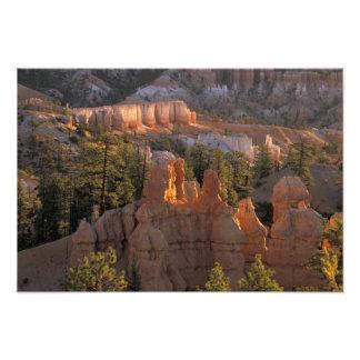 NA USA Utah Bryce Canyon NP 2 Photo Print