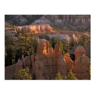 NA, USA, Utah, Bryce Canyon NP 2 Postcard