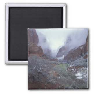 NA, USA, Utah, Zion NP, Spring snow storm, 2 Inch Square Magnet