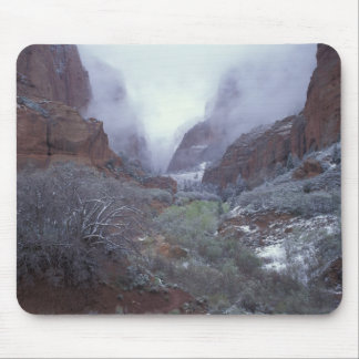 NA, USA, Utah, Zion NP, Spring snow storm, Mouse Pad
