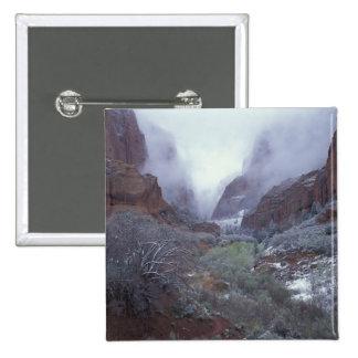 NA, USA, Utah, Zion NP, Spring snow storm, Pinback Button