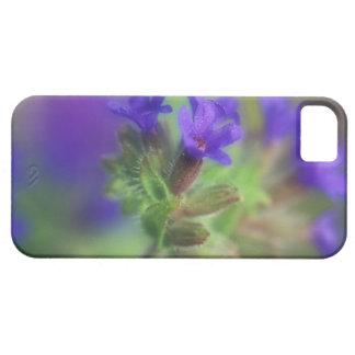 NA, USA, Washington, Eastern Washington. Wild iPhone SE/5/5s Case