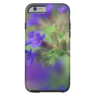 NA, USA, Washington, Eastern Washington. Wild Tough iPhone 6 Case