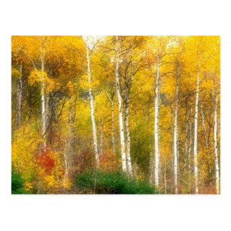 NA, USA, Washington, Fall Aspen Trees along Postcard