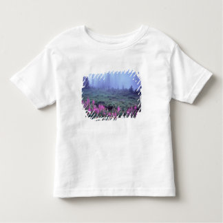 NA, USA, Washington, Foggy Alpine Meadow, Mt. Toddler T-shirt