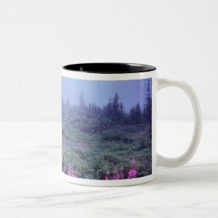 NA, USA, Washington, Foggy Alpine Meadow, Mt. Two-Tone Coffee Mug