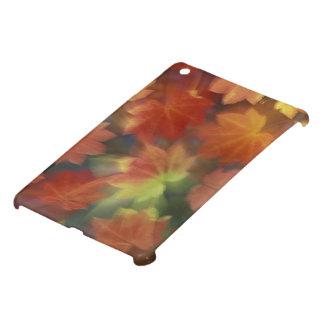 NA, USA, Washington, Issaquah, Vine maple Cover For The iPad Mini