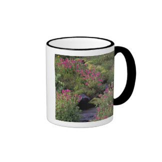 NA, USA, Washington, Mt. Rainier NP, Pink Coffee Mug