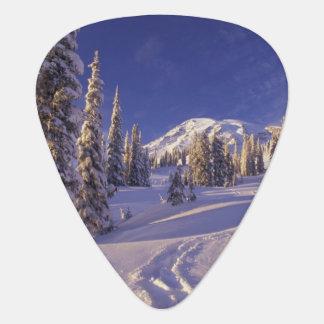 NA, USA, Washington, Mt. Rainier NP, Snowshoe Guitar Pick