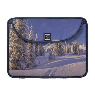 NA, USA, Washington, Mt. Rainier NP, Snowshoe Sleeve For MacBooks