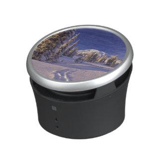 NA, USA, Washington, Mt. Rainier NP, Snowshoe Speaker